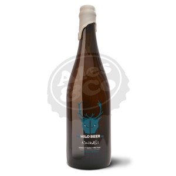 Birra WILD Ninkasi 1x750ml BOT